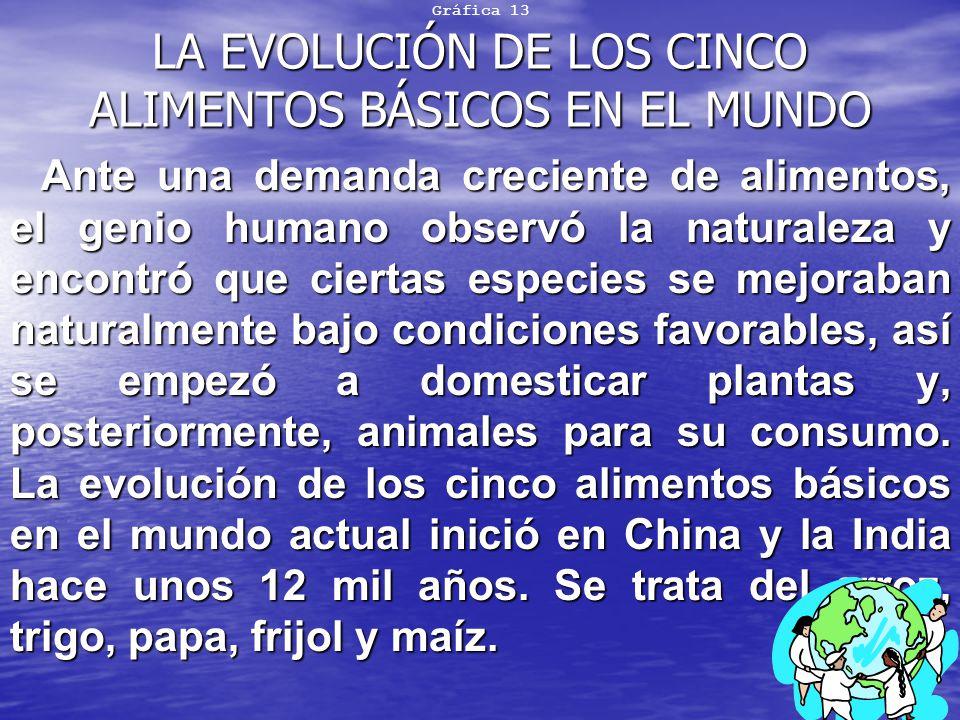 Gráfica 13 LA EVOLUCIÓN DE LOS CINCO ALIMENTOS BÁSICOS EN EL MUNDO