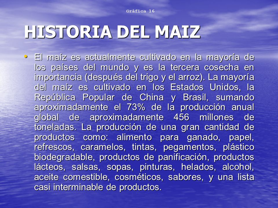 Gráfica 16 HISTORIA DEL MAIZ.