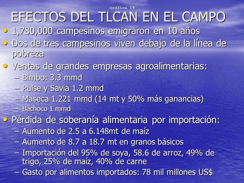 EFECTOS DEL TLCAN EN EL CAMPO