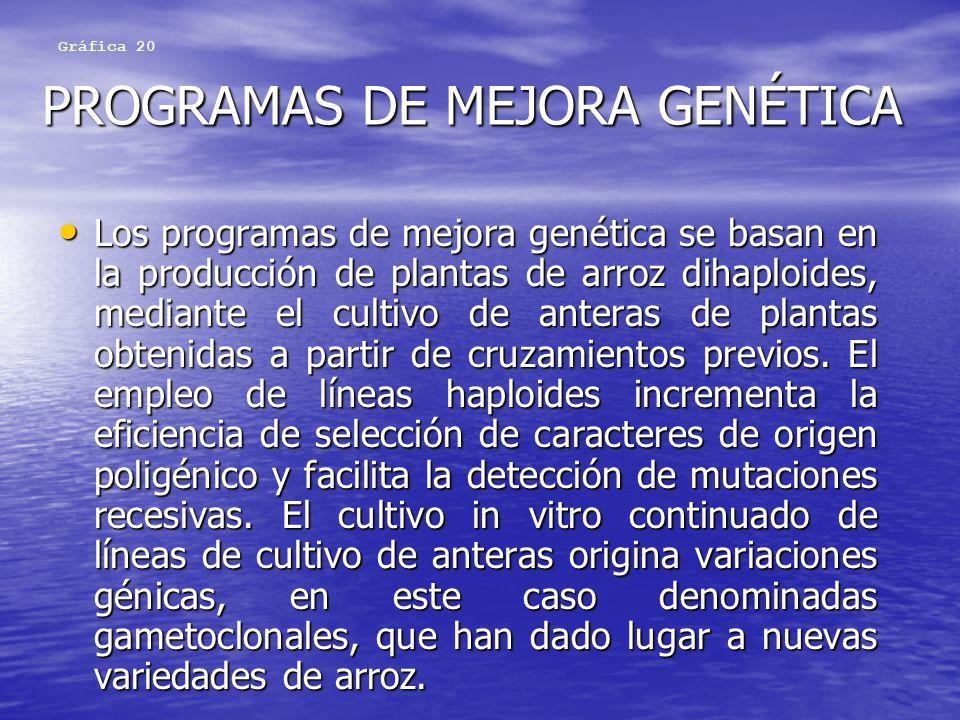 PROGRAMAS DE MEJORA GENÉTICA