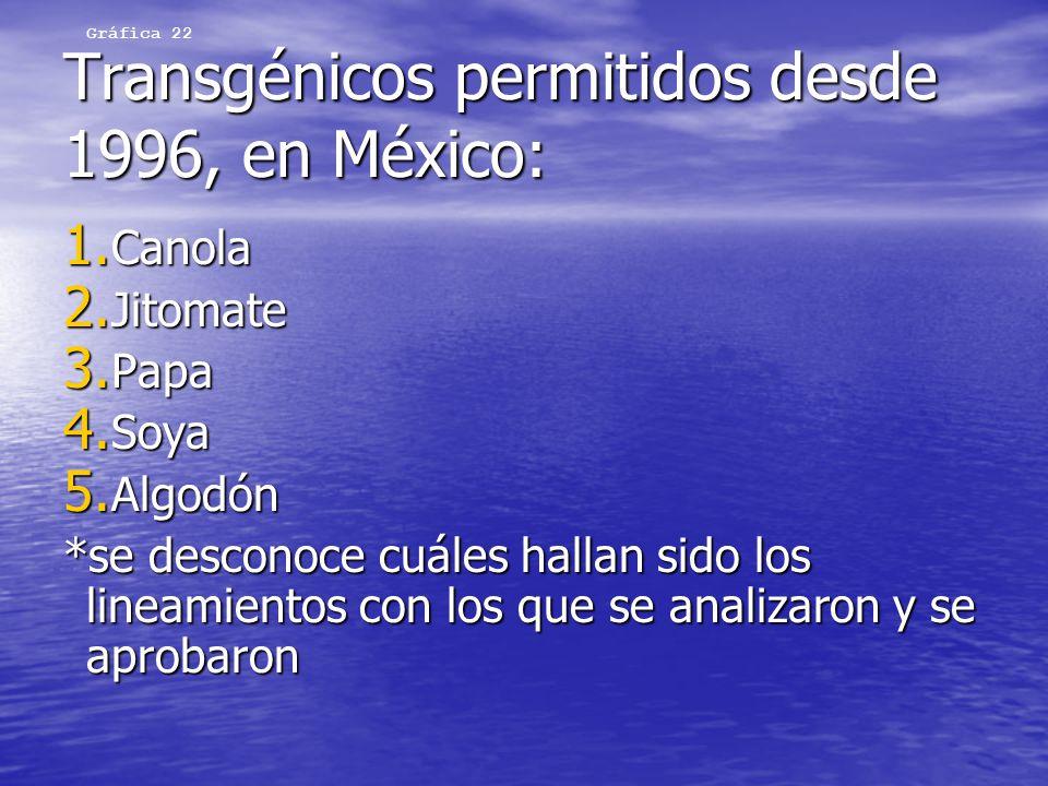 Transgénicos permitidos desde 1996, en México: