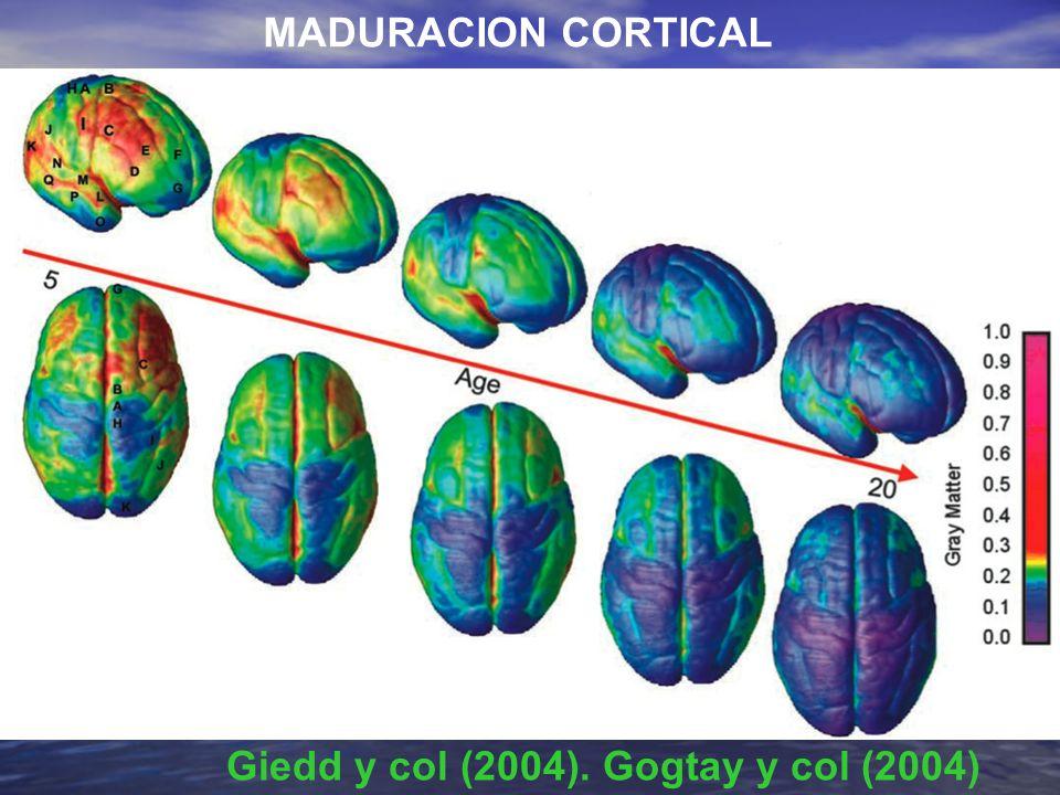 Giedd y col (2004). Gogtay y col (2004)