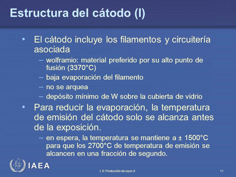 Estructura del cátodo (I)