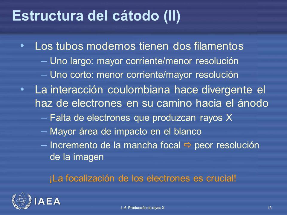 Estructura del cátodo (II)