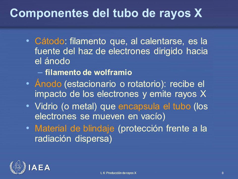 Componentes del tubo de rayos X