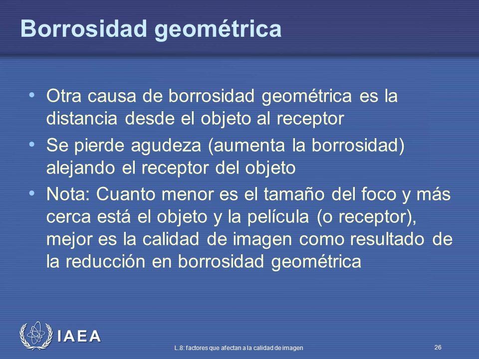 Borrosidad geométrica
