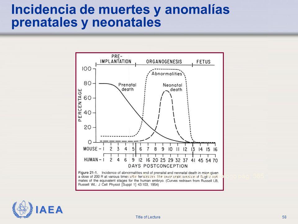 Incidencia de muertes y anomalías prenatales y neonatales