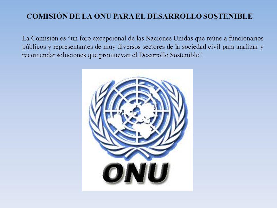 COMISIÓN DE LA ONU PARA EL DESARROLLO SOSTENIBLE