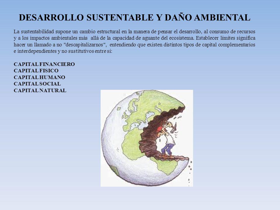 DESARROLLO SUSTENTABLE Y DAÑO AMBIENTAL