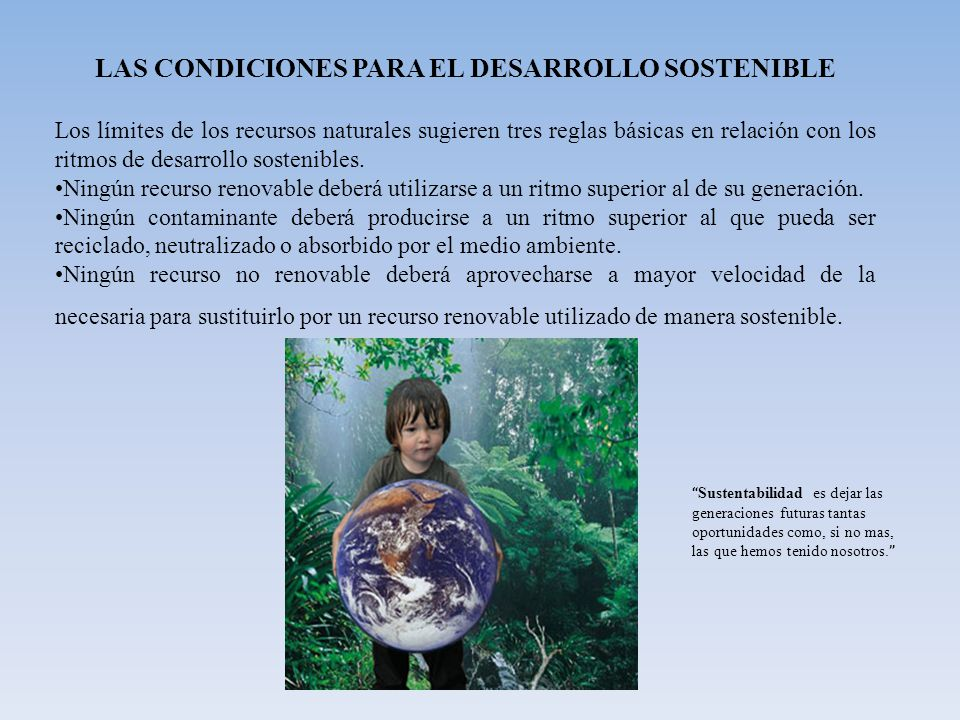 LAS CONDICIONES PARA EL DESARROLLO SOSTENIBLE