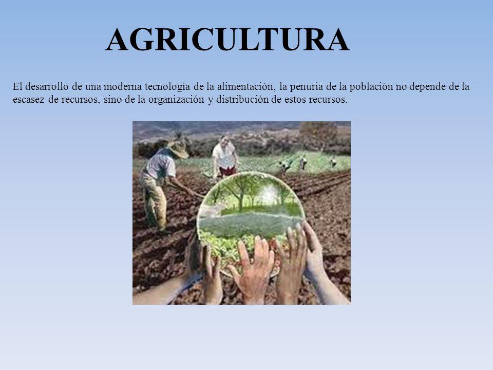 AGRICULTURA El desarrollo de una moderna tecnología de la alimentación, la penuria de la población no depende de la.
