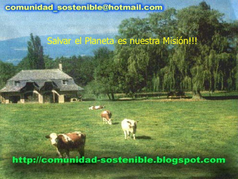 Salvar el Planeta es nuestra Misión!!!