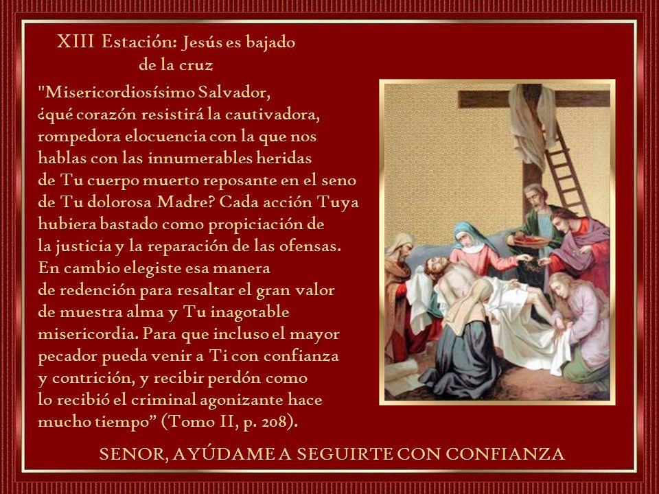 XIII Estación: Jesús es bajado de la cruz