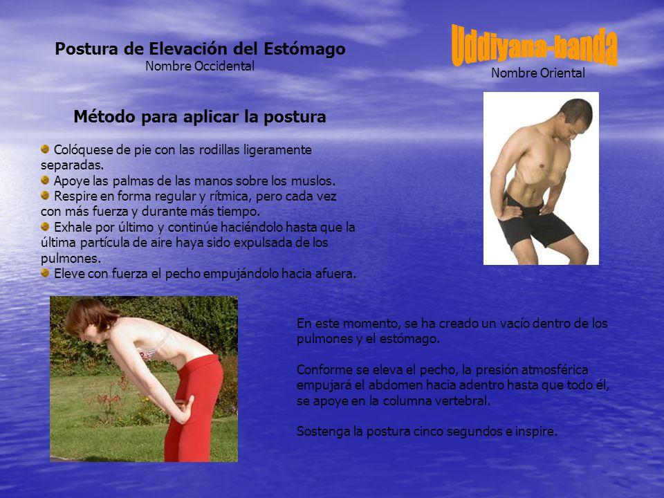 Postura de Elevación del Estómago Método para aplicar la postura