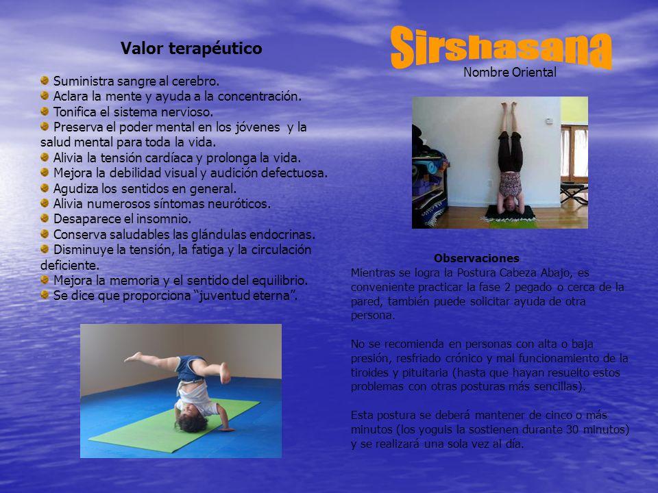 Sirshasana Valor terapéutico Suministra sangre al cerebro.