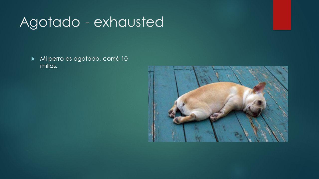 Agotado - exhausted Mi perro es agotado, corrió 10 millas.