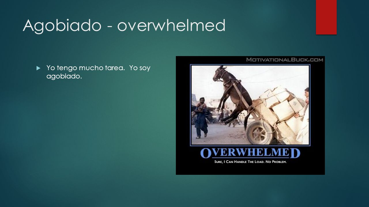 Agobiado - overwhelmed