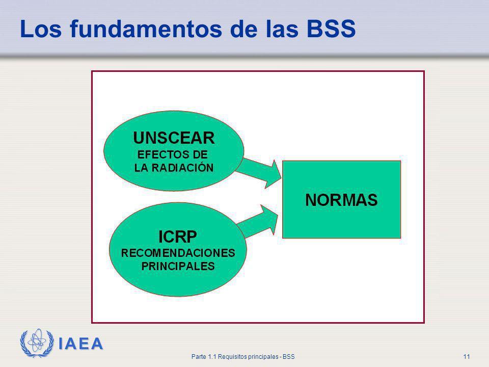 Los fundamentos de las BSS