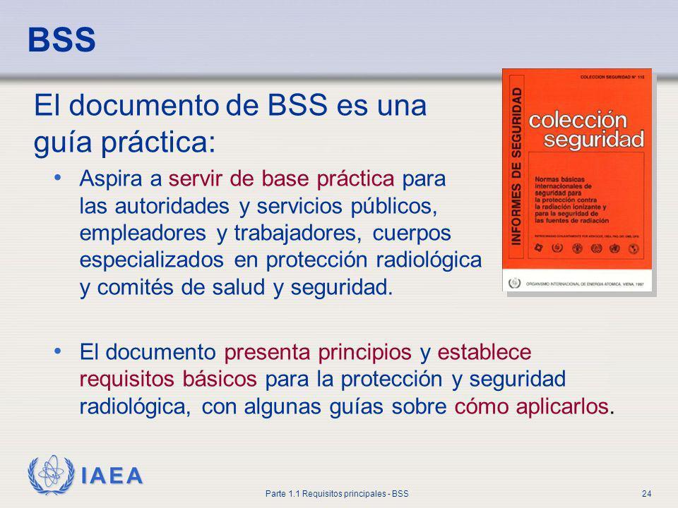 BSS El documento de BSS es una guía práctica: