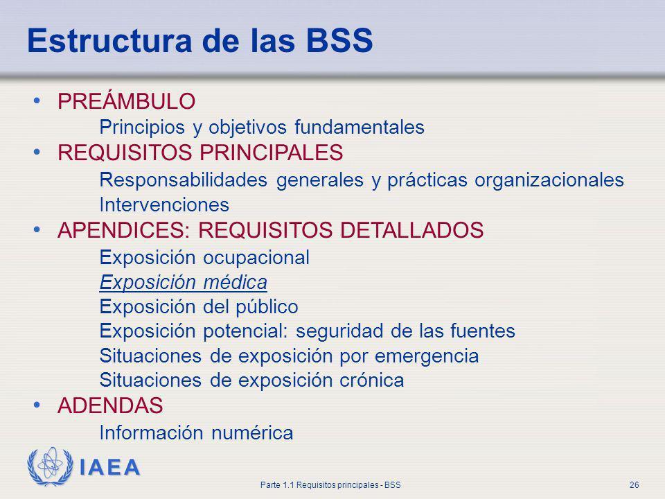 Estructura de las BSS PREÁMBULO REQUISITOS PRINCIPALES