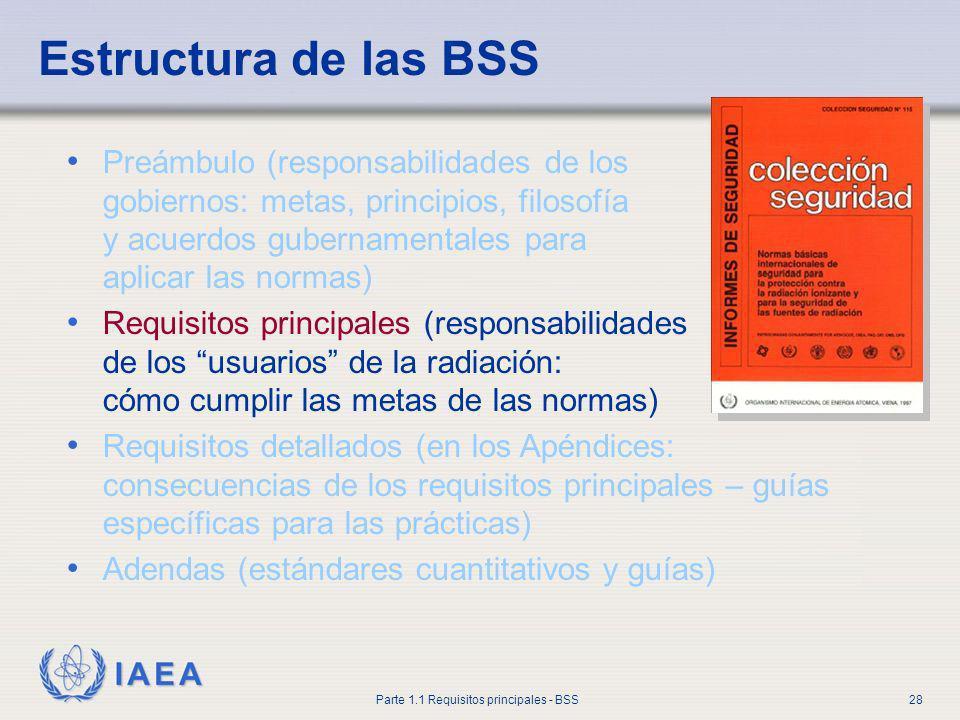 Estructura de las BSS Preámbulo (responsabilidades de los gobiernos: metas, principios, filosofía y acuerdos gubernamentales para aplicar las normas)