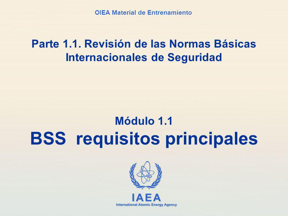 Módulo 1.1 BSS requisitos principales