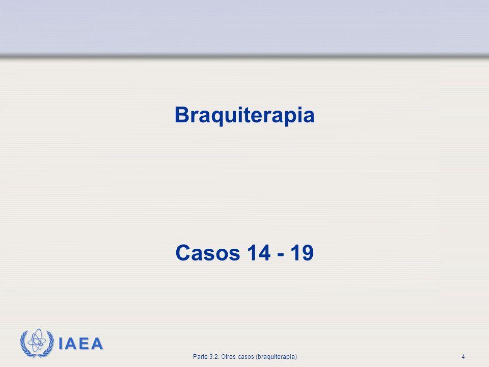 Braquiterapia Casos 14 - 19