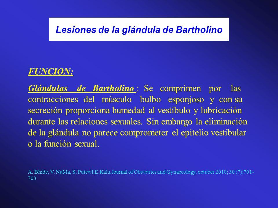 Lesiones de la glándula de Bartholino