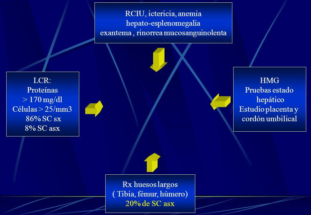 hepato-esplenomegalia exantema , rinorrea mucosanguinolenta