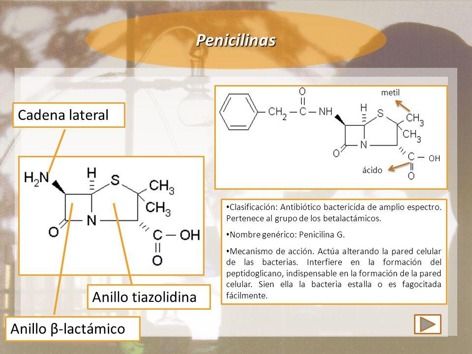 Penicilinas Cadena lateral Anillo tiazolidina Anillo β-lactámico metil