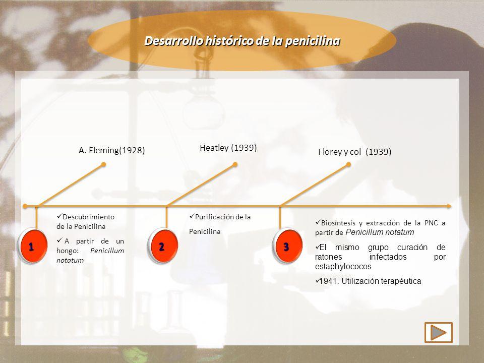 Desarrollo histórico de la penicilina