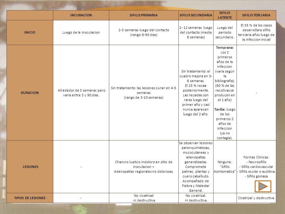 Etapas de la sífilis INCUBACION SIFILIS PRIMARIA SIFILIS SECUNDARIA