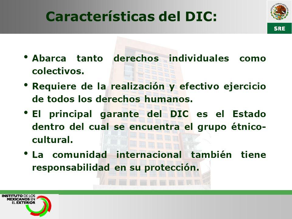 Características del DIC: