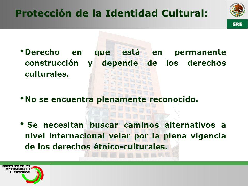 Protección de la Identidad Cultural: