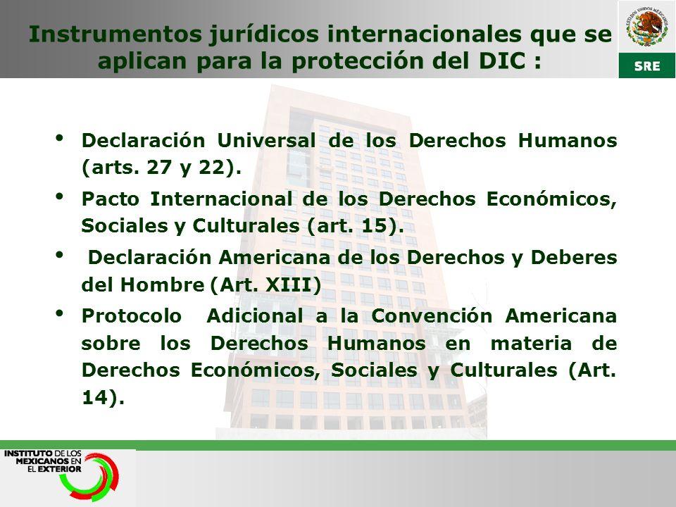 Instrumentos jurídicos internacionales que se aplican para la protección del DIC :