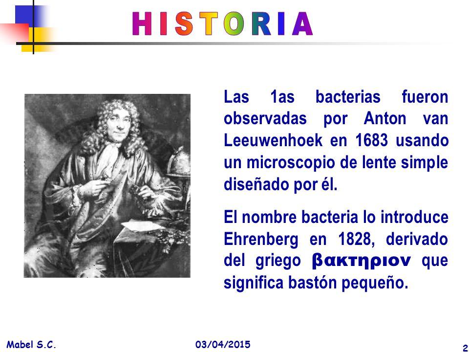 HISTORIA Las 1as bacterias fueron observadas por Anton van Leeuwenhoek en 1683 usando un microscopio de lente simple diseñado por él.