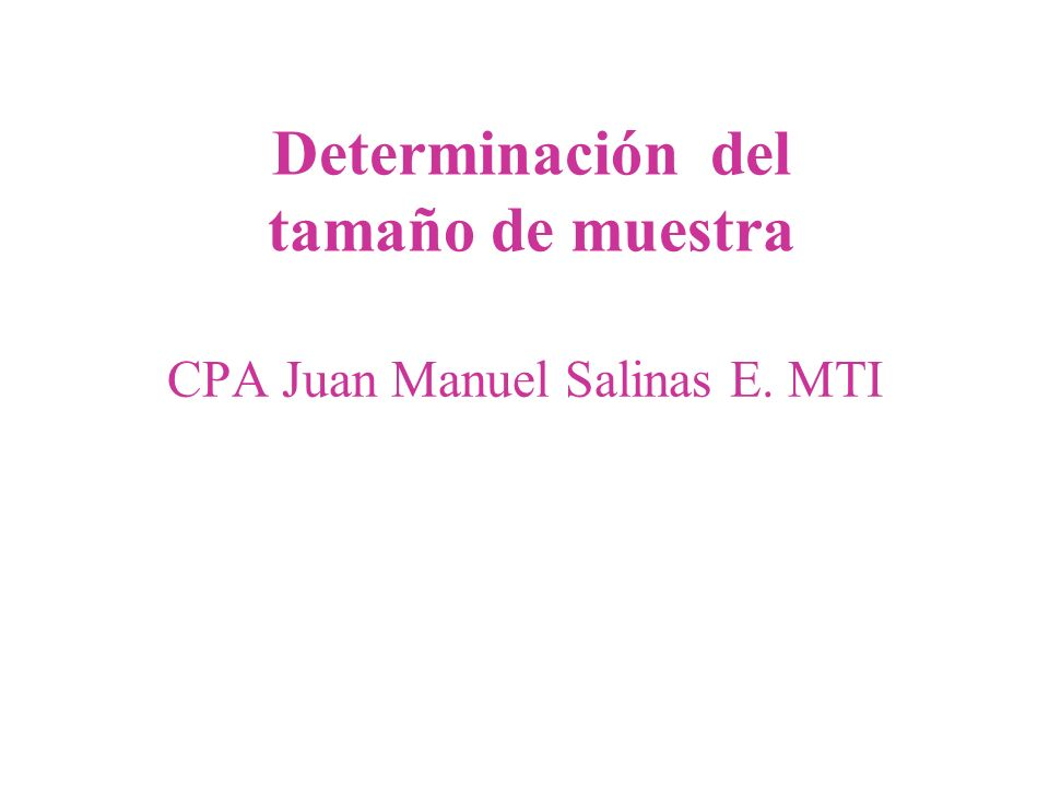 CPA Juan Manuel Salinas E. MTI