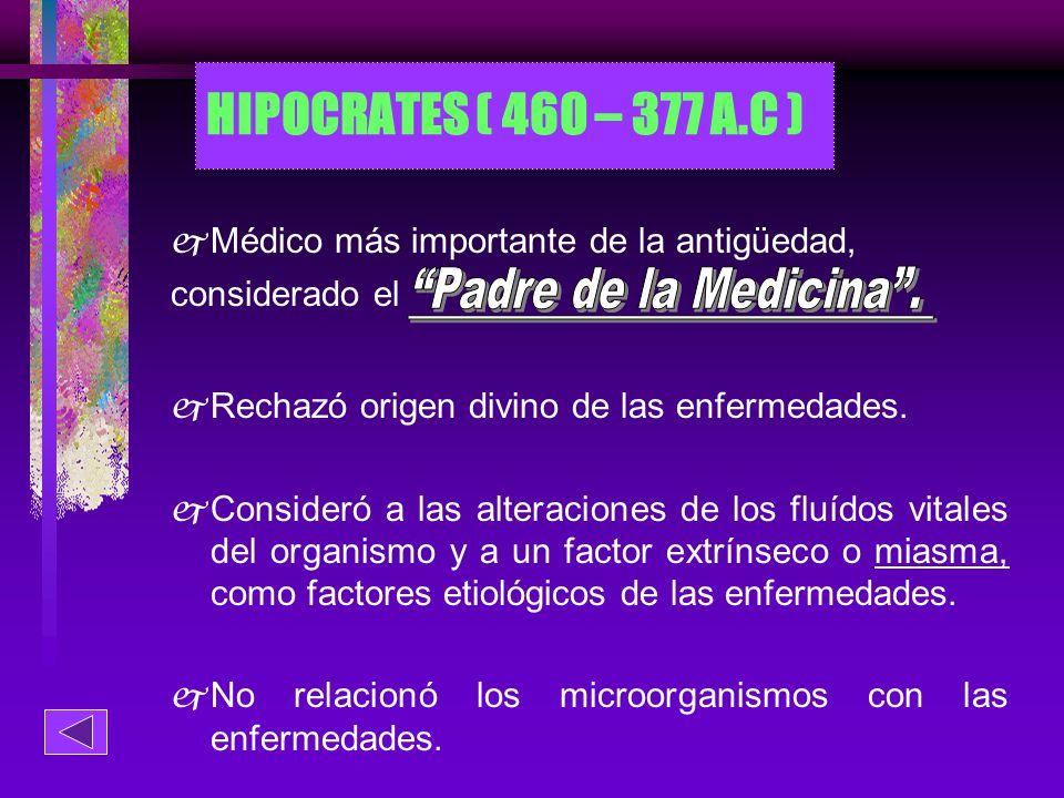 HIPOCRATES ( 460 – 377 A.C ) Padre de la Medicina .