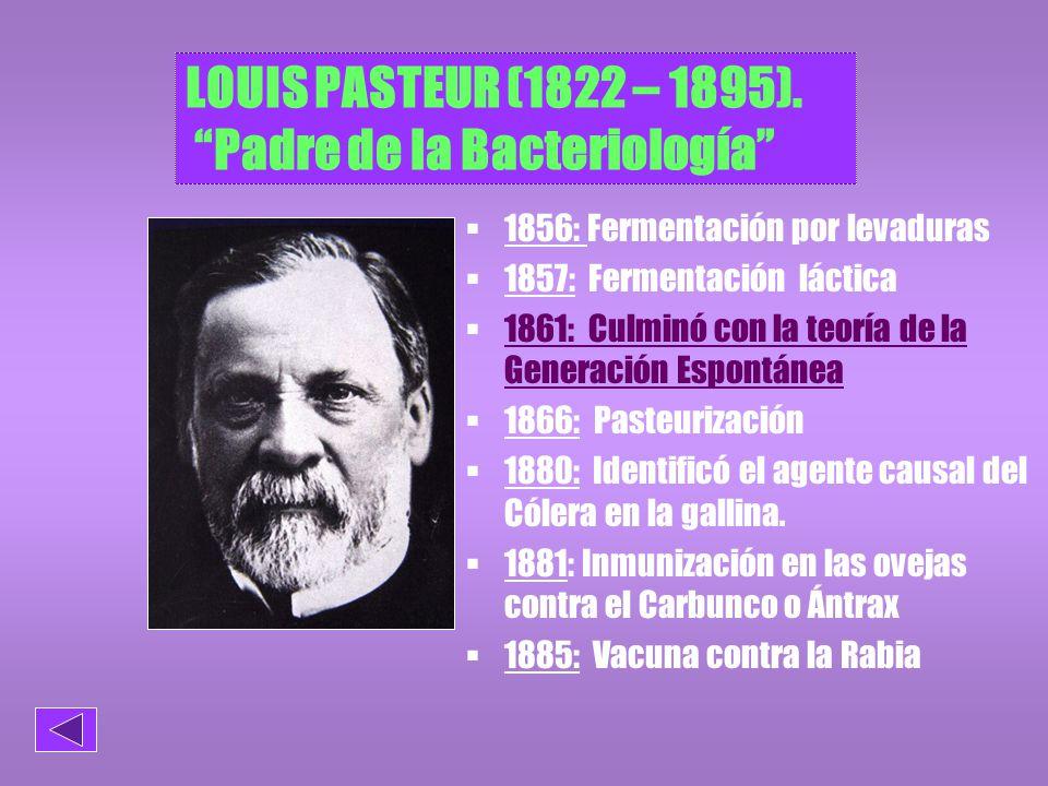 LOUIS PASTEUR (1822 – 1895). Padre de la Bacteriología