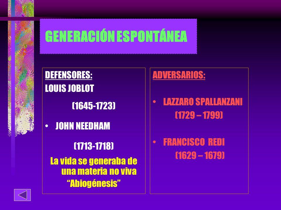 GENERACIÓN ESPONTÁNEA