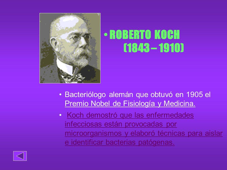 ROBERTO KOCH (1843 – 1910) Bacteriólogo alemán que obtuvó en 1905 el Premio Nobel de Fisiología y Medicina.