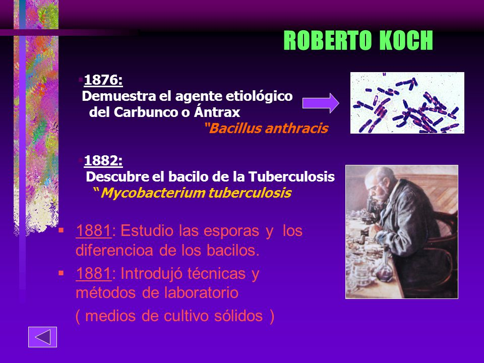 ROBERTO KOCH 1876: Demuestra el agente etiológico. del Carbunco o Ántrax. Bacillus anthracis. 1882: