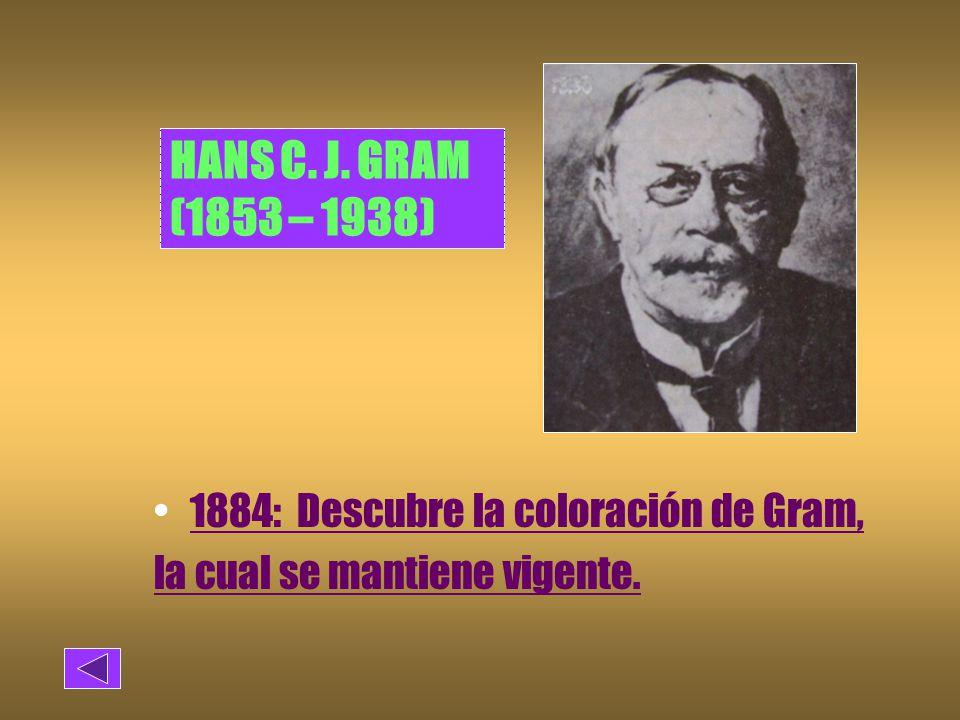 HANS C. J. GRAM (1853 – 1938) 1884: Descubre la coloración de Gram,