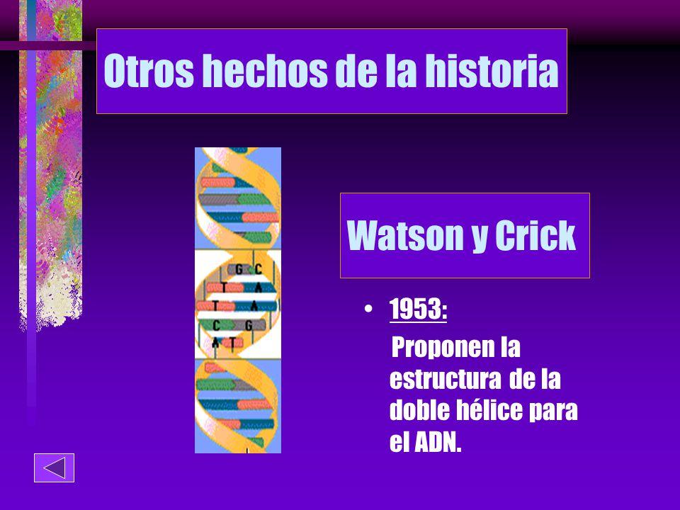 Otros hechos de la historia