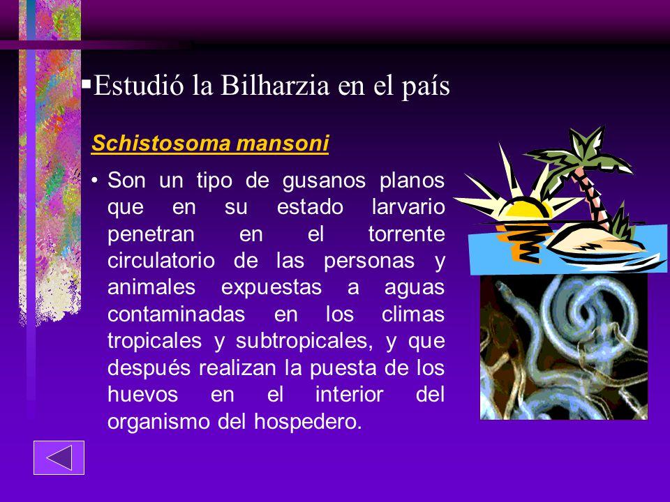 Estudió la Bilharzia en el país