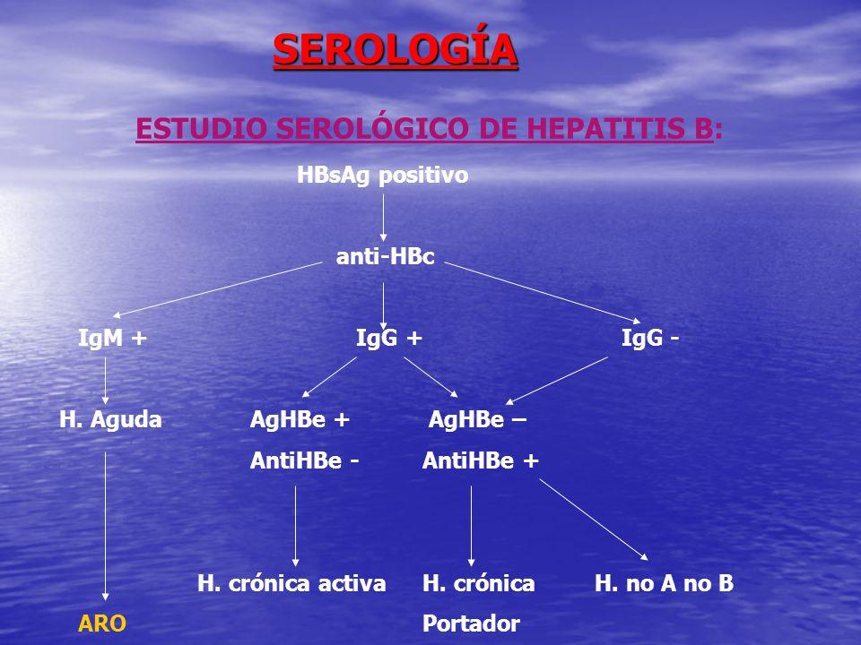 ESTUDIO SEROLÓGICO DE HEPATITIS B: