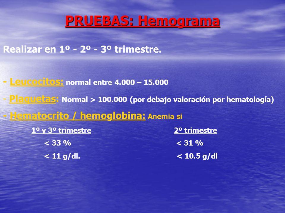 PRUEBAS: Hemograma Realizar en 1º - 2º - 3º trimestre.