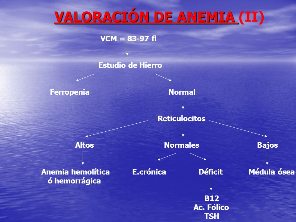 VALORACIÓN DE ANEMIA (II)