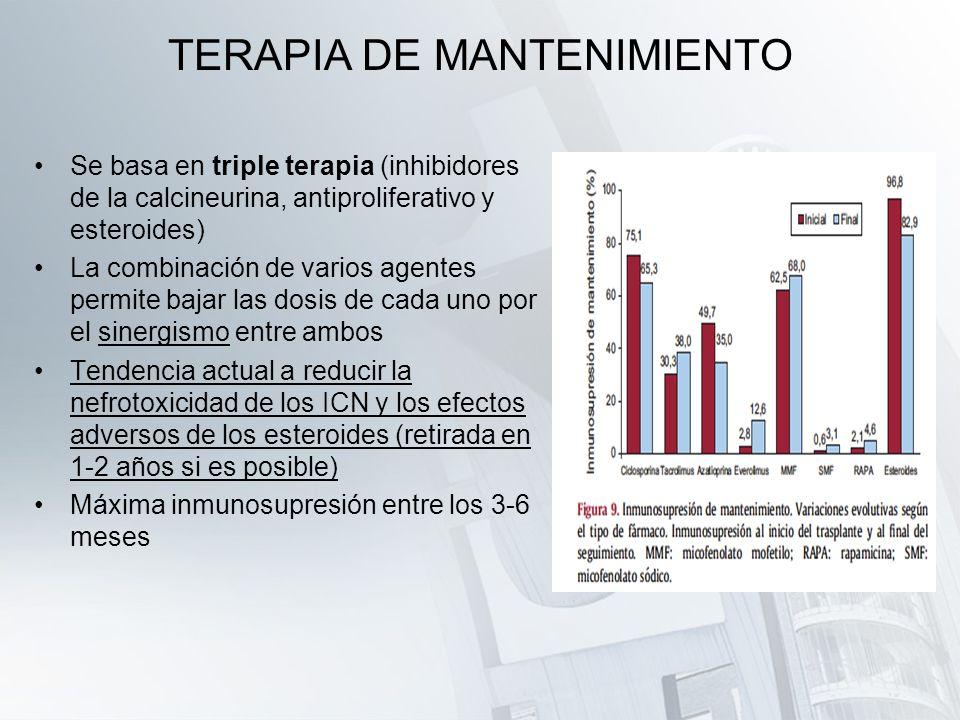 TERAPIA DE MANTENIMIENTO