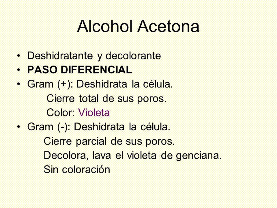Alcohol Acetona Deshidratante y decolorante PASO DIFERENCIAL